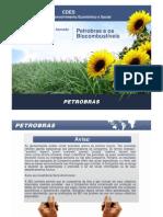 3-4-09petrobrasapresentacaogabrielli-090403120830-phpapp01