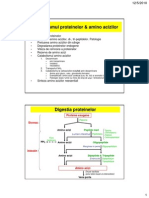 Metabolism Proteic