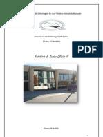 relatorio 2010 2011.docx