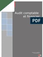 Audit et révision des comptes