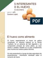 Datos Interesantes Sobre El Huevo