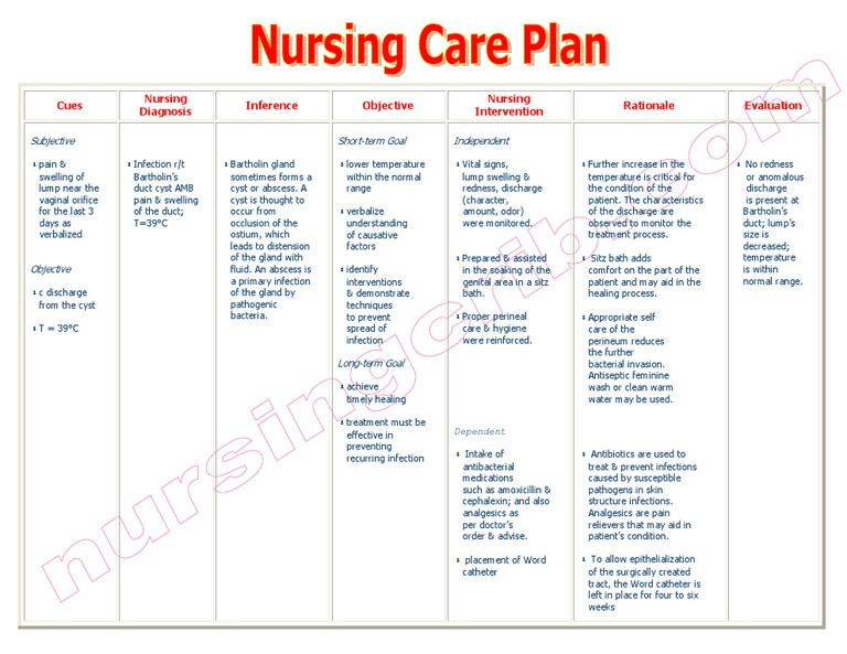 NursingcribCom Nursing Care Plan Impaired Adjustment
