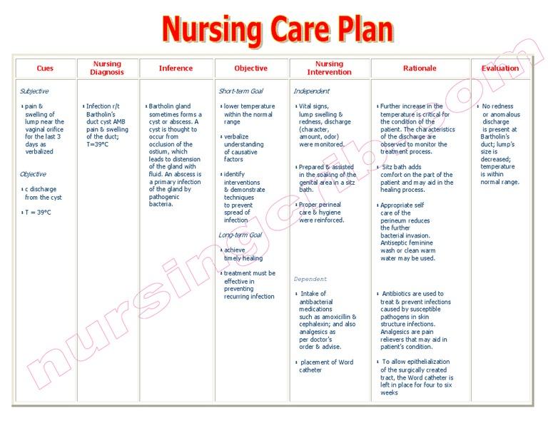 Nursingcrib Com Nursing Care Plan Infection Bartholins