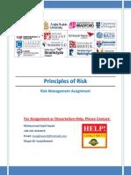 Principles of Risk