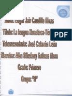 REPORTE DE INVESTIGACIÓN  TODAS LAS VOCES ESP.