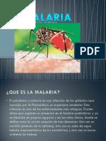 Novedades Sore Malaria y Toxoplasmosis