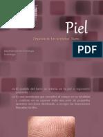Piel (Morfología)