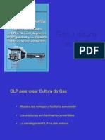 2-3 Gas Natural vs GLP