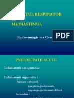 CURS 3 RespiratorUL