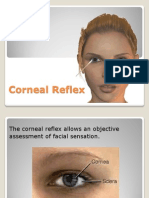 corneas