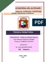 TÉCNICA PROBATORIA FINALLLLLLL