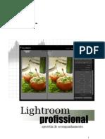 apostila Lightroom 2009