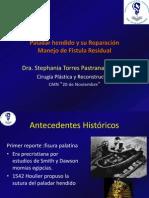 Paladar hendido y su Reparación stephy 2012.ppt