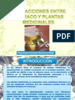 Interacciones Farmaco Planta Medicinales