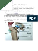 n-anatomy