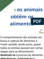 Como Os Animais Obtêm Os Alimentos