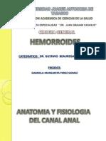 13. Hemorroides