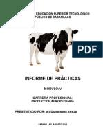 INSTITUTO DE EDUCACIÓN SUPERIOR TECNOLÓGICO