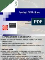 DNA isolasi
