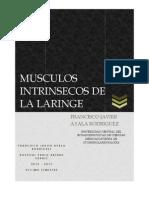 Ayala Francisco Musculos Intrinsecos de La Laringe