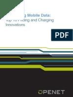 Openet Mobile Data Top Ten Innovations WP 20121106
