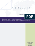 OrgaSystems-FS Customer-Centric-Utility WP 2012Sep 0
