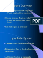 Mingu 12 Sistem Limfatik