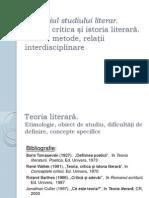 Domeniul studiului literar