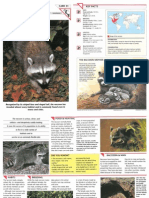 Wildlife Fact File - Mammals - Pgs. 31-40