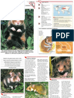 Wildlife Fact File - Mammals - Pgs. 41-50