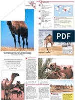 Wildlife Fact File - Mammals - Pgs. 51-60