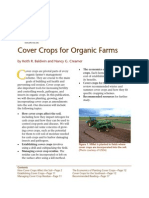 Cover Crops for Organic Farmers