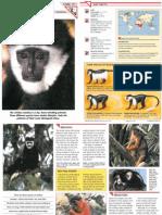 Wildlife Fact File - Mammals, Pgs. 111-120