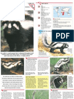 Wildlife Fact File - Mammals, Pgs. 191-200