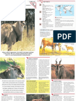 Wildlife Fact File - Mammals  Pgs. 321-330