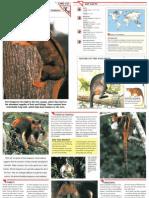 Wildlife Fact File - Mammals  Pgs. 331-340