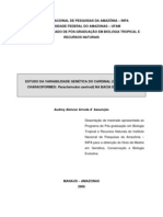 2006 - Estudo da variabilidade genética do cardinal (Ostariophysi-Characiformes - Paracheirodon axelrodi) na Bacia do Rio Negro