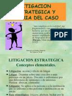 litigación estratégica y teoría del caso