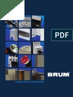 Brum 2012 Completo Web