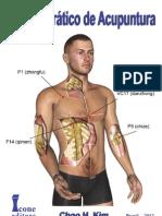 Manual Prático de Acupuntura FRAGMENTOS.pdf