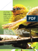Interacción entre aves frugívoras y miconia floribunda (Bonpl) DC. (MELASTOMATACEAE) en el pnn Serranía de los Yariguíes (Santander)