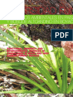 Diversidad Funcional y servicios ambientales en paisajes de páramo y bosque altoandino en Boyacá
