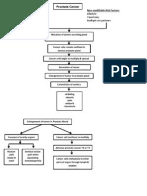 carcinoma de prostata pdf en espanol
