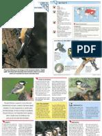 Wildlife Fact File - Birds - Pgs. 121-130