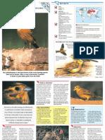 Wildlife Fact File - Birds - Pgs. 141-150