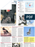 Wildlife Fact File - Birds - Pgs. 151-160