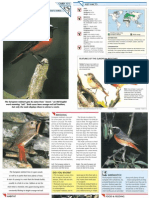 Wildlife Fact File - Birds - Pgs. 171-180