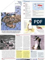 Wildlife Fact File - Birds - Pgs. 221-230