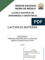 Trabajo Final de Lactancia Materna