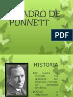Cuadro de Punnett